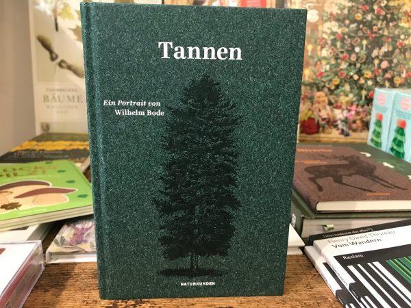 Tannen - Ein Portrait